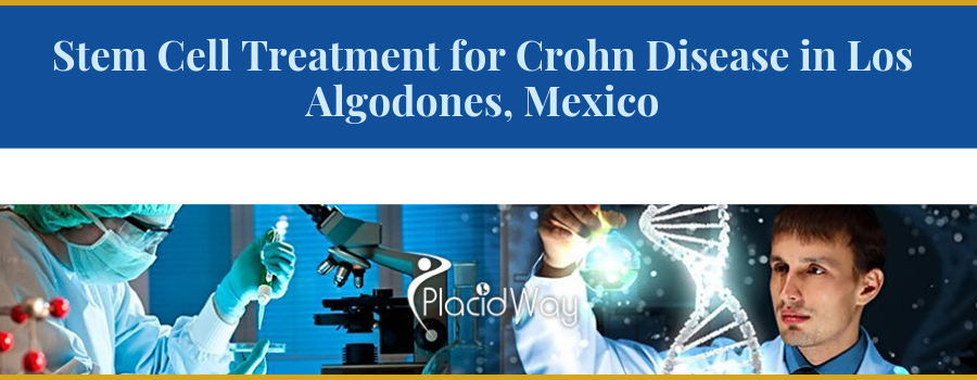 Best Centers For Spinocerebellar Ataxia Stem Cell Therapy