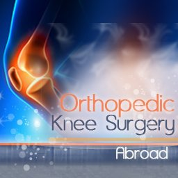 Orthopedic/Knee Surgery