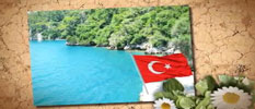 Medical-Tourism-in-Turkey-at-a-very-affordable-price